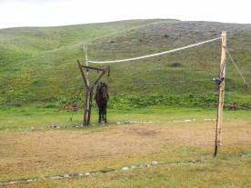 Kirgistan