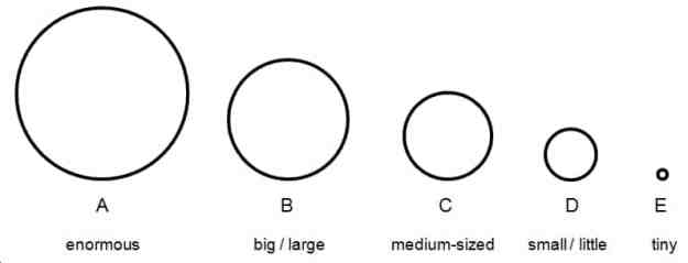 image-2-6-2-the-size-of-shapes-in-english