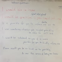 Indirect Questions - Board Plan