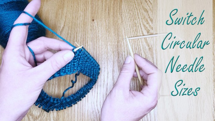 Learn to switch circular needle sizes while knitting in the round in this lesson with Liz Chandler @PurlsAndPixels.