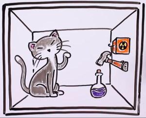 Explicación del gato de Schrödinger. El gato en el interior de la caja.