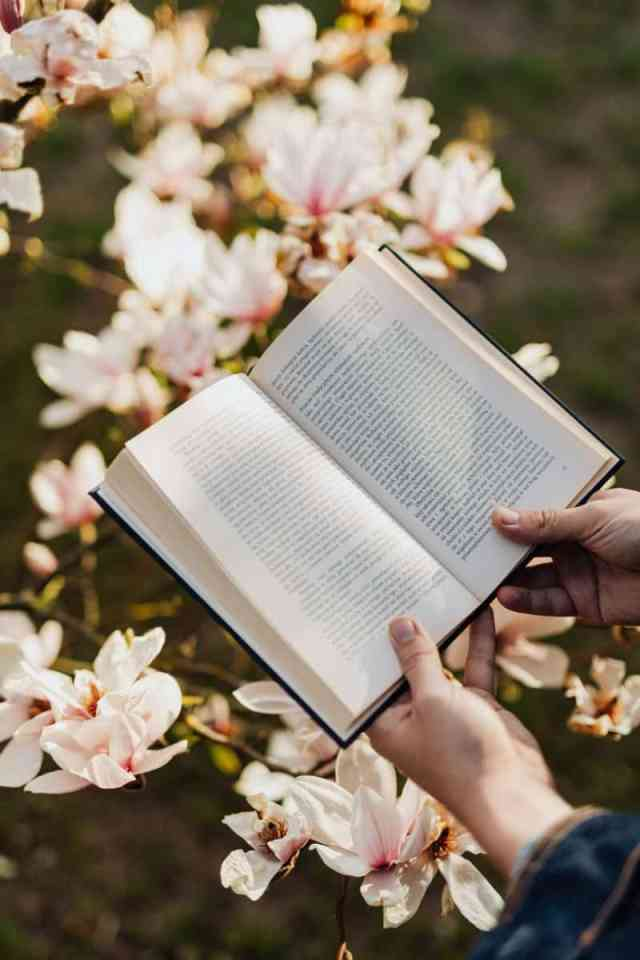 opened book in hands of person against floral background on sunny day