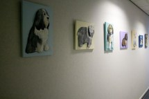 More of my 3D Acrylic Paintings up in the corridor outside my studio