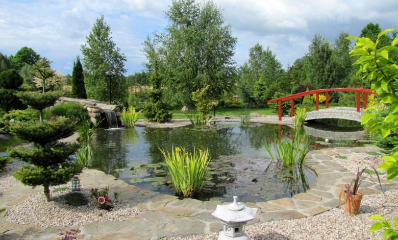 Photo of How to Create a Zen Garden