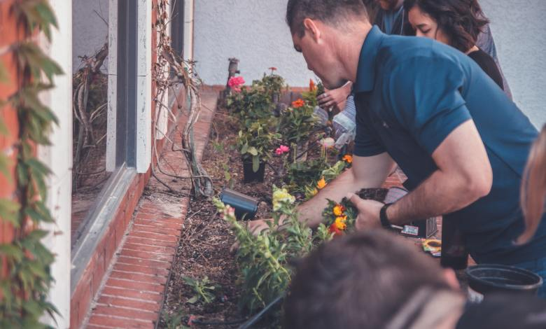 Photo of Odd Gardening Tricks That Actually Work