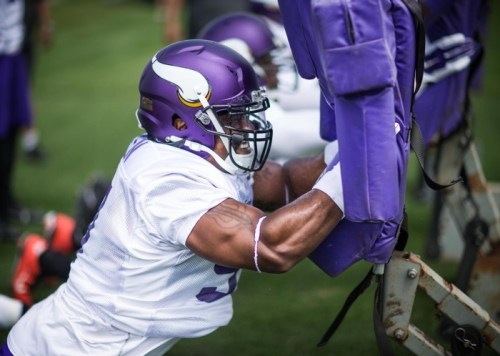 (Photo Courtesy of Vikings.com)