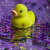 photo - rubber duck with glitter