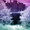 photo - infrared castle