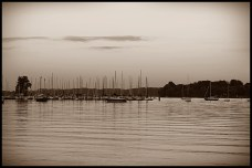 Concord Park, Knoxville - Sunset Sepia