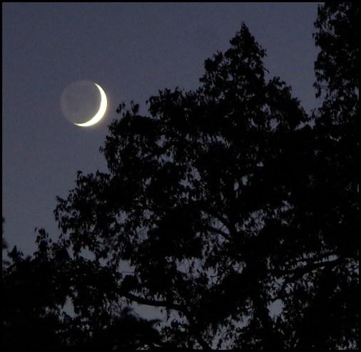 Crescent Moon original