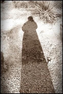 xtra tall shadow