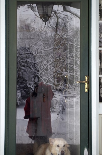 Artsy reflection with snow.