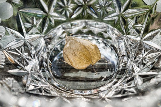 refraction-