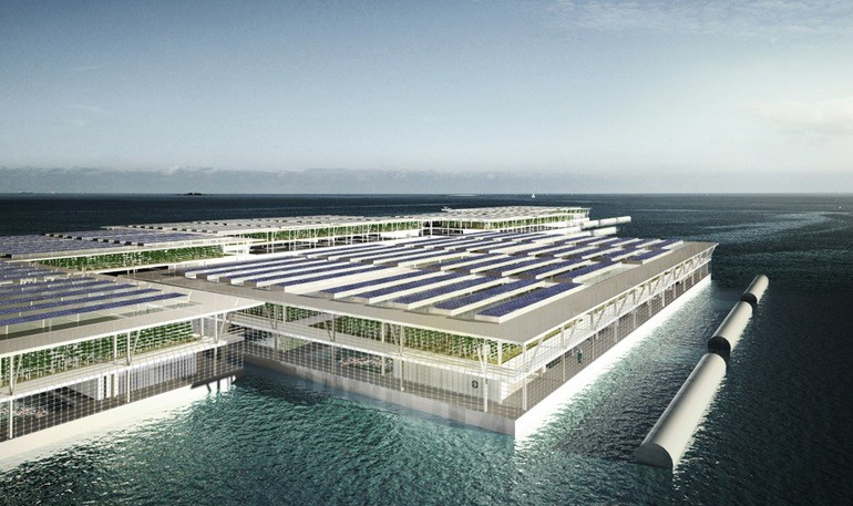 floating-farms-1
