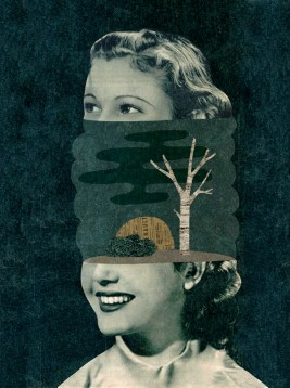 Collage of a woman head cut in half with a landscape between the two portions of her face.