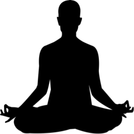 Meditation: Meditation Pose - Purpose Driven Mastery