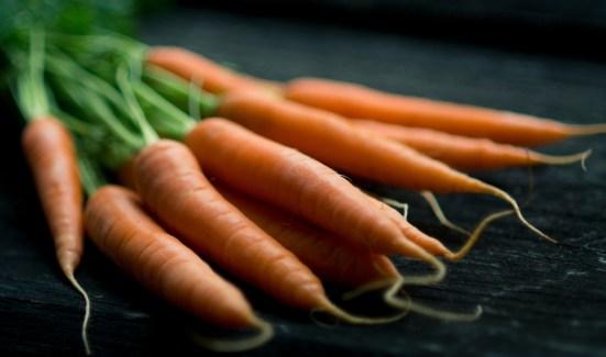 Fiber: Carrots - Purpose Driven Mastery