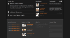 Modernize- Home page content built with some shortcodes of this theme and different widgets in footer