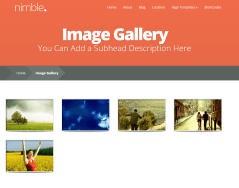 Nimble- Image gallery has beautiful effects on mouse hover
