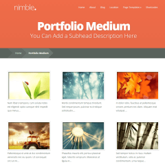Nimble- Portfolio with medium grid of portfolio items that too with text