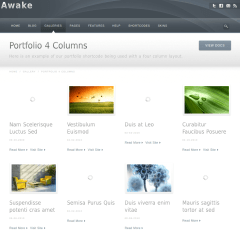 Awake-WordPress-Theme-Responsive