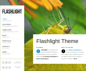 Flashlight-Worpress (1)