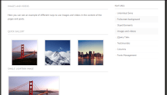 Images and video feature of Expression theme