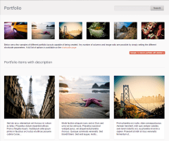 Salutation- Several portfolio layouts are supported in this theme