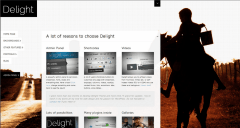Delight-blog page including featured images and videos.