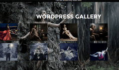 Event- A fullwidth background with gallery grid