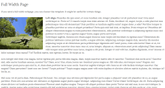 Full-width page of  Romangie theme