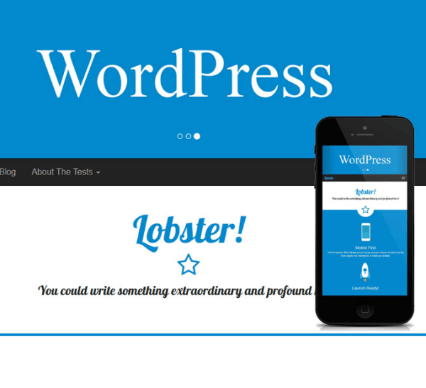Lobster- lightweight, versatile and fully responsive