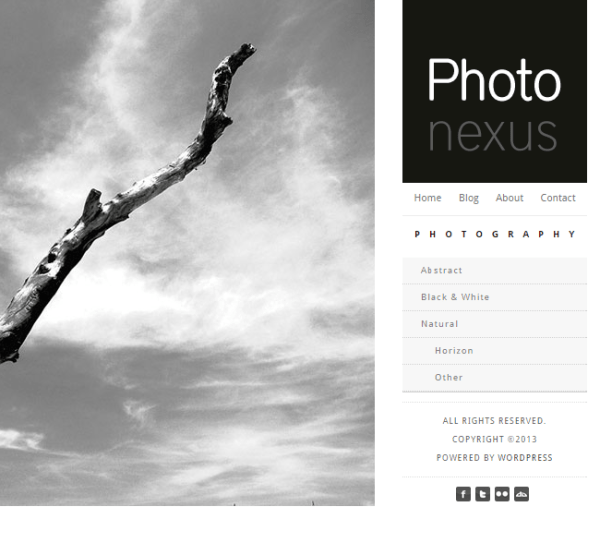 Photo Nexus- Wordpress gallery 2 in 1