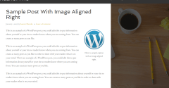 Blog page of Agency Pro theme