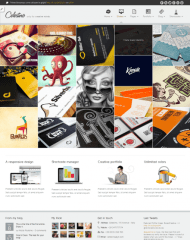 Celestino-Portfolio-WordPress-Theme-Template
