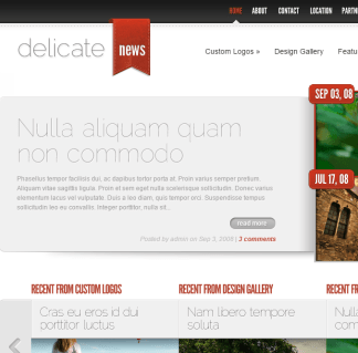 DelicateNews- A content-heavy magazine theme