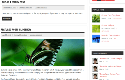 Dynamic News Lite- Blog of this theme with classic layout