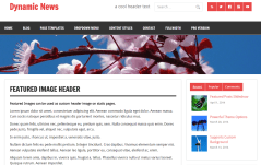 Dynamic News Lite- Page template with featured image header