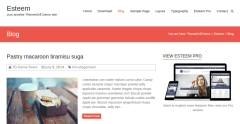 Esteem-WordPress-theme-responsive