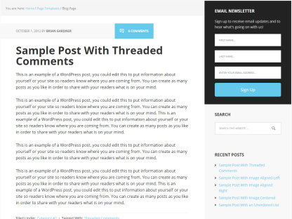 Executive Pro- Blog page template