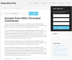 Executive Pro- Page layout with one sidebar and content