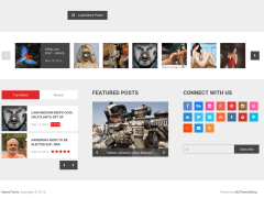 Footer-Newstime-WordPress-theme