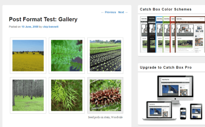 Gallery items are shown by Catch Box theme