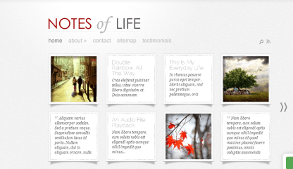 Home page of DailyNotes theme