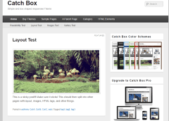 Homepage of Catch Box theme