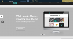 Homepage of Electra theme