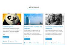 Latest-Blogs-WordPress-Theme