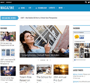 Magazine - is a responsive 3-column theme