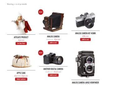 Pinshop- Product grid layout with Add to cart and Buy now buttons