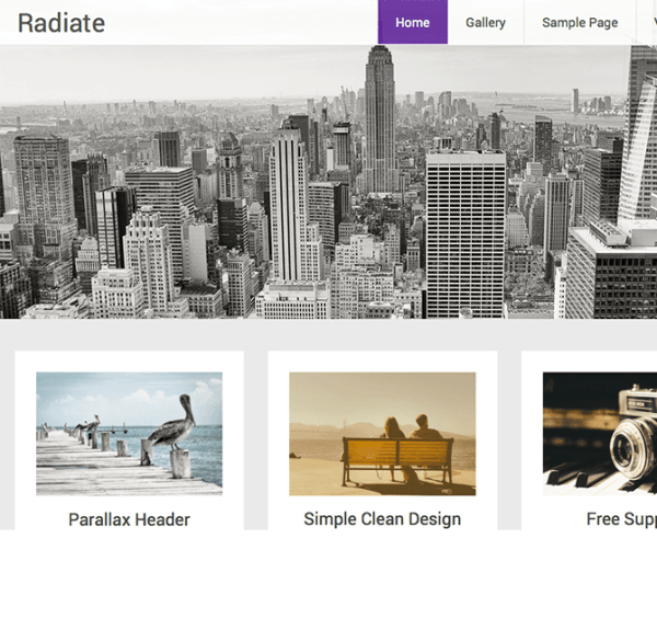 Radiate – WordPress Theme